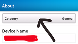 How to find the Mac address on a BlackBerry 10 phone