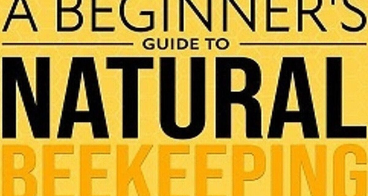 A Beginner's Guide to Natural Beekeeping – The Book