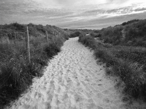 A black and white of an image of  sand dunes has worked out quite well, because the strong contrast between the grass and the white sand has added impact and drama